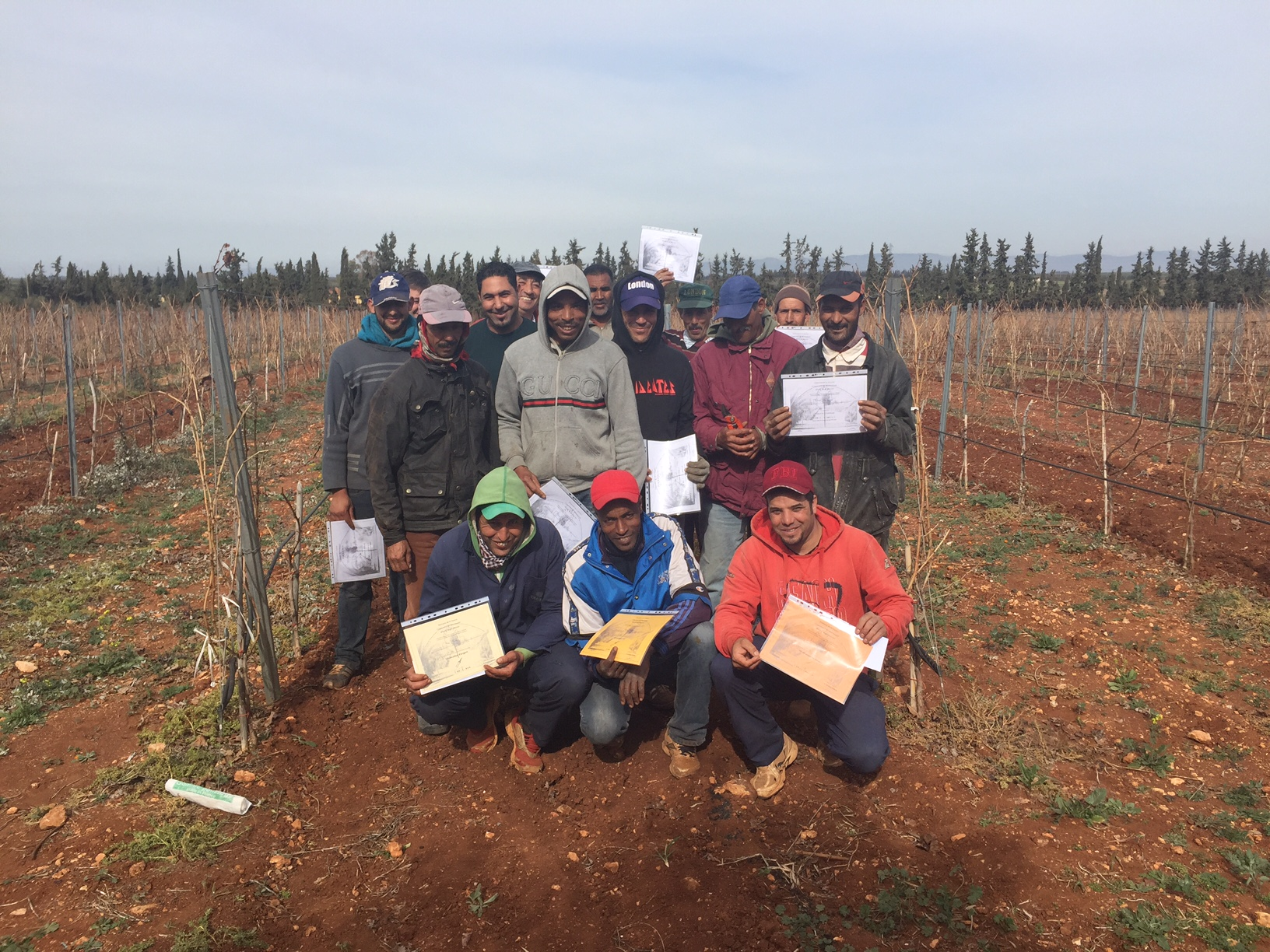 First vine pruning competition in Domaine Zouina