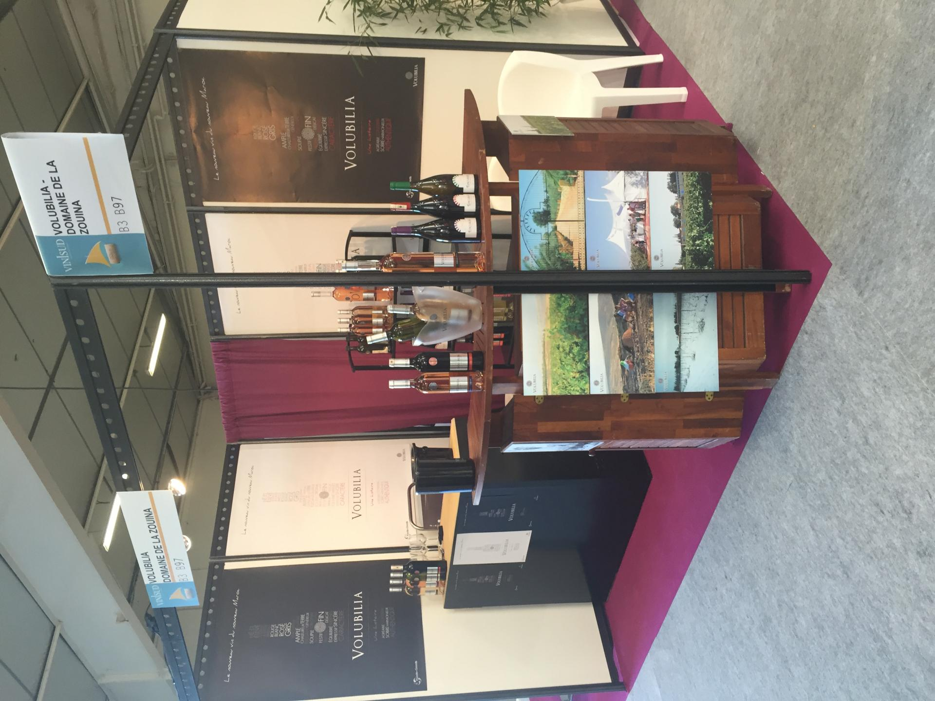 Vinisud exhibition
