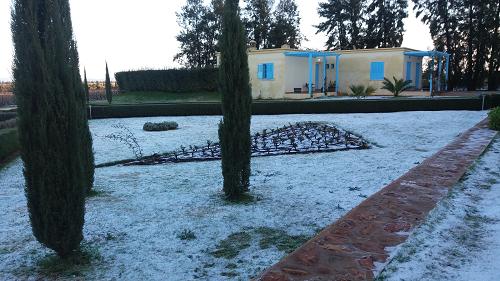 Le domaine sous la neige (16/02/16)